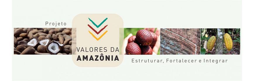 "Projet ""Valeurs d'Amazonie"""