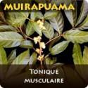Muirapuama